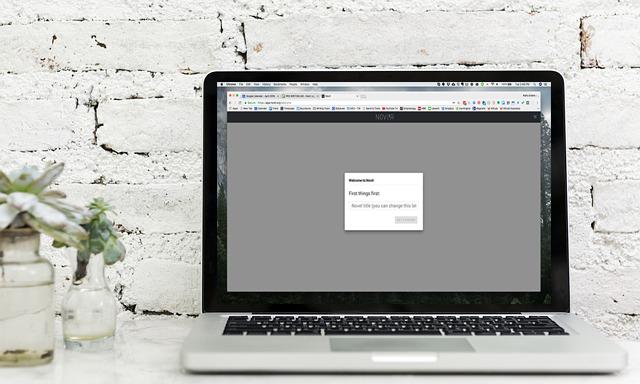 Writing App Reviews: Novlr